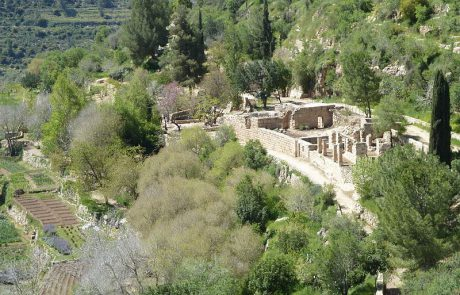 Sataf: Ancient Agriculture in Action